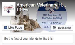 american veterinary hospital simi valley